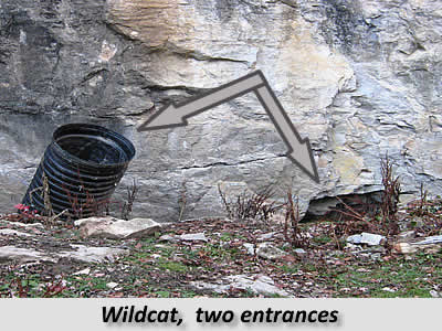 Wildcat-Two-Entrances